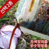[모산양파 정보화마을] 창녕 순수 양파즙 50포 / 양파 재배부터 생산까지