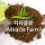 썩지않는 흙-미라클팜 20리터/3년간분갈이필요없음/배양토/분갈이흙/상토/마사토/친환경흙