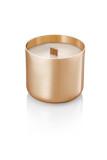 크라프터(Craftr) 소이 캔들 - Titanium Gold / 우드윅 / 나무심지 / 우드심지/ 소이왁스