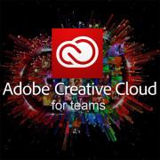 어도비 Adobe Creative Cloud for Teams(CCT) 어도비 CCT [1년/라이선스/기업용/처음사용자/설치및기술지원가능]