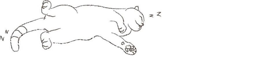 고양이잡화점 니쿠큐 대표이미지1