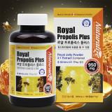 (승명)로얄 프로폴리스 플러스 950mg x 180캡슐 로얄제리