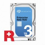 씨게이트 3TB Enterprise NAS Rescue ST3000VN0011