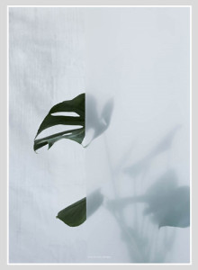 Kristina Dam Studio Split-leaf Poster, 북유럽인테리어포스터
