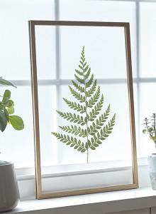 [파블로랩] 북유럽 인테리어 투명 액자 CLEAR ART - Fern Leaf 03