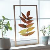 [파블로랩] 북유럽 인테리어 투명 액자 CLEAR ART - Red Leaf #01