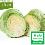 [이팜] 양배추(800g)(무농약이상)