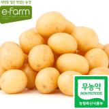 [이팜] 간식용 감자(무농약이상)2kg