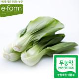 [이팜] 청경채(200g)(무농약이상)