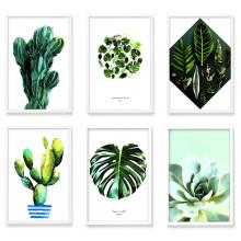 식물액자 몬스테라 포스터 26종 모음