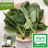 [이팜] 무농약 시금치 200g