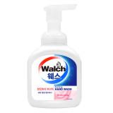 [Walch] 포밍 항균 핸드워시 300ml (Moisturizing)