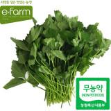 [이팜] 참나물(무농약이상)200g