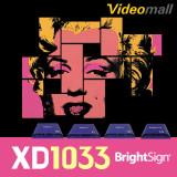 [Brightsign]XD1033 브라이트사인 네트워크 다중 컨트롤