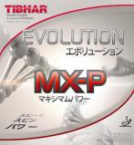 티바 탁구러버 에볼루션 MX-P EVOLUTION MX-P