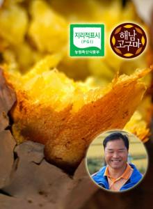 [해남고구마생산자협회] 다모농장 꿀고구마 10kg