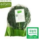 [이팜] 무농약 케일(쌈용)100g