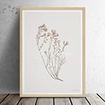 유럽산 우드프레임 포스터 원목액자 - Spartium 02