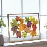 유럽산 우드프레임 투명액자 CLEAR ART - Fall Leaves #01