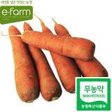 [이팜] 당근(1kg)(무농약이상)