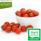 [이팜] 방울토마토(무농약/특/2번과)500g