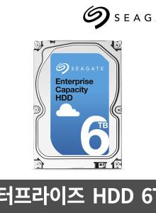 씨게이트 6TB Enterprise Capacity ST6000NM0024