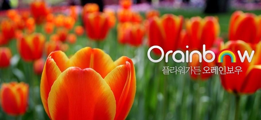 orainbow 대표이미지1