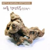 세틀 오푸와 유목 (s size,15cm 미만)