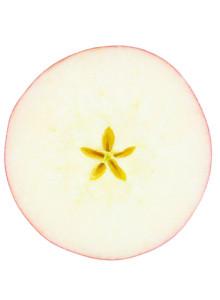 원데이팩 와삭 사과도넛 8g