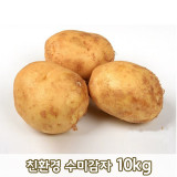 [큰손농원]친환경 수미감자 10kg