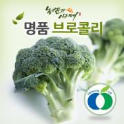 [농사꾼과아지매]무농약 브로콜리 1.5kg 이상