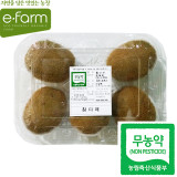 [이팜] 무농약 참다래 (키위 특)5입