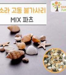 하나쭌 자연 조개 소라 고동 불가사리 믹스 파츠