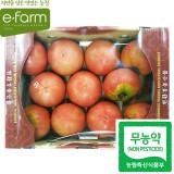 [이팜] 무농약 완숙 토마토(특)2kg