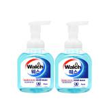[Walch] 웨스 포밍 항균 핸드워시 300ml (Aqua) 2개