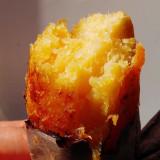 전남해남 백제농장 오화섭님의 햇 꿀고구마 5kg 특상