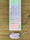 실속형 레인보우 콤보, AK22 Fantastic Duo 보급형 LED 키보드 마우스 셋트