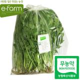 [이팜] 열무(무농약이상)1kg