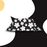 [그라운드커버] 리틀하우스 텐트 - 블랙플라워(Black_Flower) / 2-3인용 텐트, 미니멀캠핑 텐트, 백패킹, 2인용 텐트, 쉘터, 그늘막 겸용