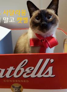 -스크래치상품- 골골캔하우스 캣벨 고양이 스크래쳐 하우스