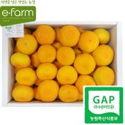 [이팜] [GAP인증] 노지 감귤(2S~M 특)(2.5kg)