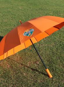 강원FC 우산