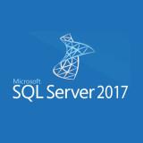 SQL 서버 2017 Standard 2Core CAL무제한/기업용/코어라이선스/SI