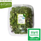 [이팜] 무농약 베이비 새싹(100g)