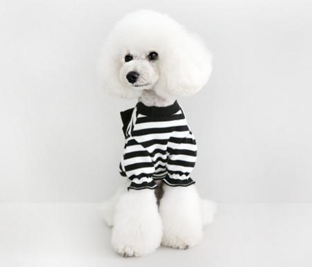 강아지옷/스트라이프 니트- 블랙