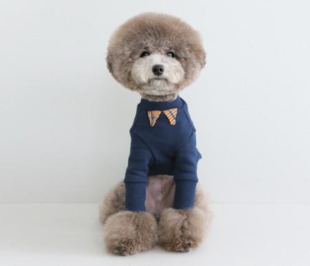 강아지옷/SCHOOL BOY LOOK-navy / 스쿨보이룩 - 네이비