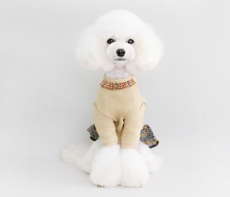 강아지옷/SCHOOL GIRL LOOK-beige / 스쿨걸룩 - 베이지