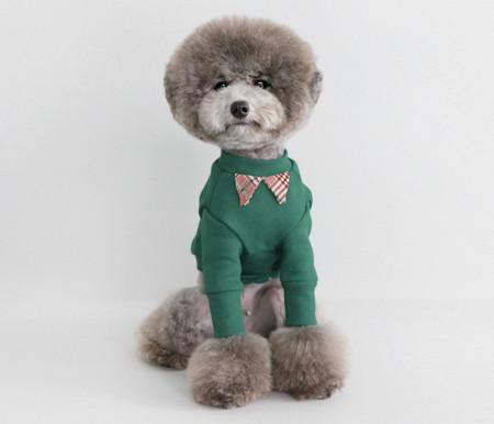 강아지옷/SCHOOL BOY LOOK-bluegreen / 스쿨보이룩 - 블루그린