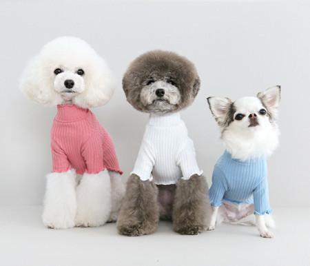 """강아지옷/EVERY """"T"""" – pink,white,sky / 에브리 T-핑크,화이트,스카이"""