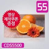 55형 디지털사이니지 CDS5500 광고용모니터 DID 오토플레이